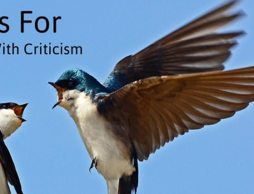 4 Tips For Dealing With Criticism